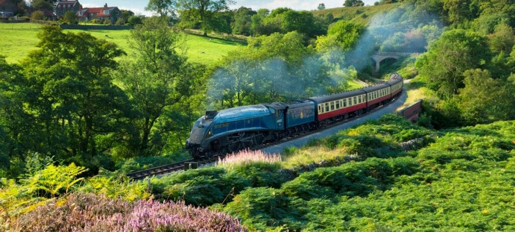 Dewley Hill refusals turns heritage railways to imported coal
