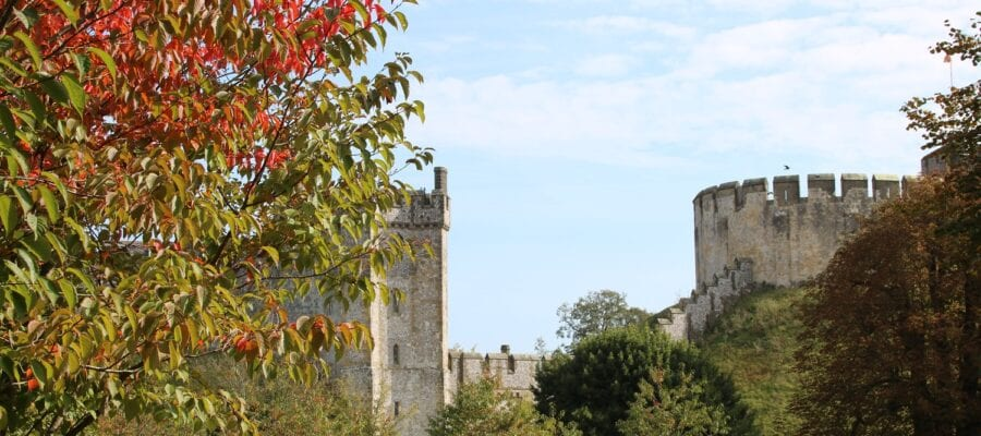 Harvest bonanza at Arundel Castle's gardens