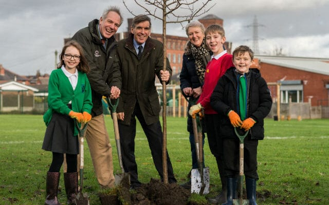 First forest tree takes root