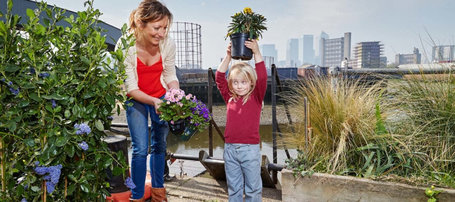 Young gardeners green the grey