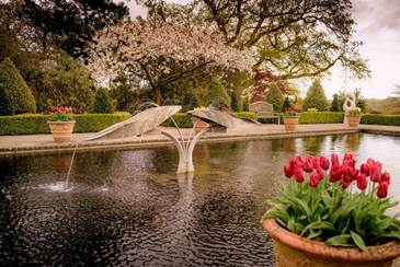 Borde Hill Garden launches programme of events for 2019