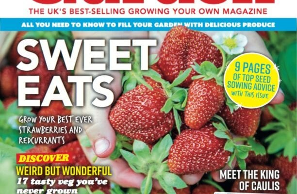 April issue of Kitchen Garden out now!