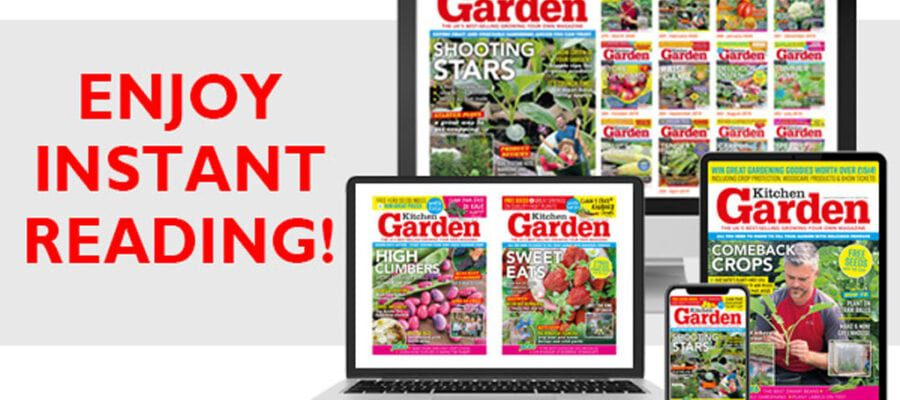 Can't get to the shops? Read your favourite magazine on any device!