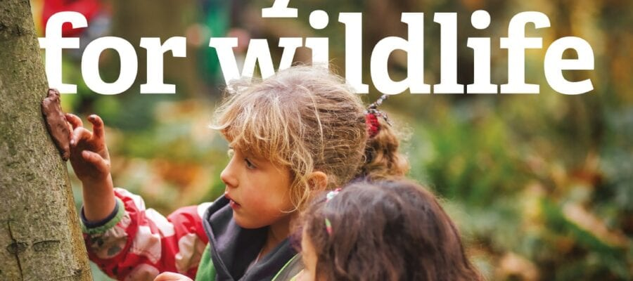 A year for wildlife