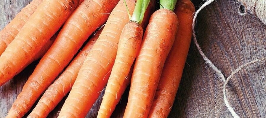 Back To Basics... With Carrots