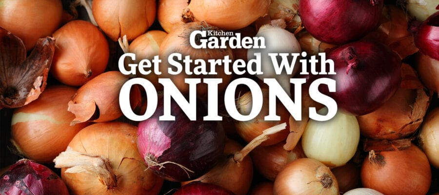 Video: How to Get Started Growing Onions