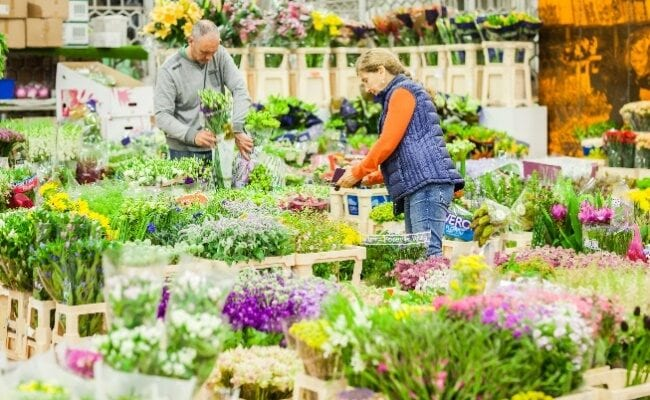 A new home and era for the UK's biggest and only dedicated flower market
