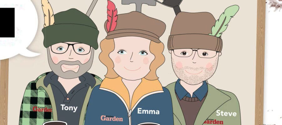 Get Growing: On The Plot With The 3 Mudketeers