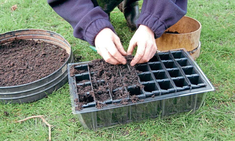 A pair of hands placing soil into the cells of a cell tray to prepare for sowing seeds.