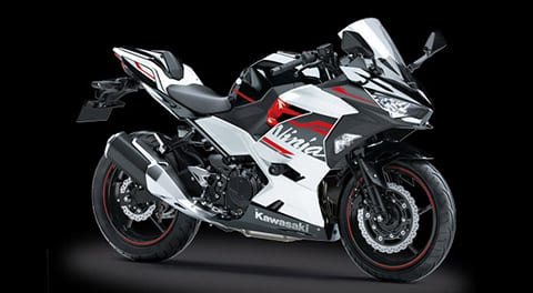 This is the 2020 Ninja 250. Looks pretty cool and could make a good spread of power for next year.